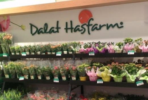 Dalat Hasfarm ra mat website moi voi nhieu tinh nang noi bat hinh anh