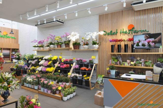 Dalat Hasfarm khai truong cua hang hoa tuoi dau tien o Binh Duong hinh anh 6