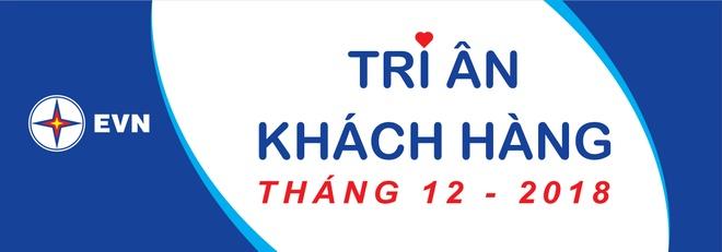 EVN trien khai 'Thang tri an khach hang' hinh anh 1