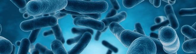 21 - Bí quyết yên tâm ăn Tết cho người mắc hội chứng ruột kích thích