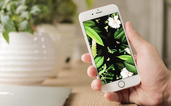 5 iPhone cu dang mua nhat trong thang 4 tai Di Dong Viet hinh anh 1