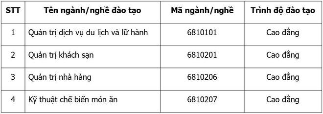 Cao dang Dai Viet cam ket viec lam cho sinh vien sau tot nghiep hinh anh 3