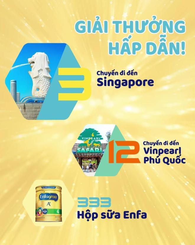 Top 5 dau tien vao chung ket 'Tim kiem bo 3 thong minh Viet Nam' hinh anh 4