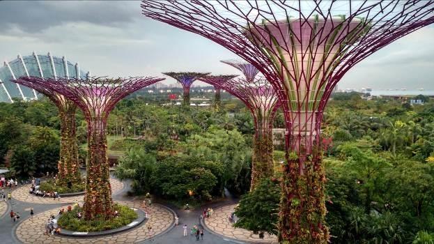 Vietrantour mang luong gio moi den cac tour Singapore truyen thong hinh anh 1