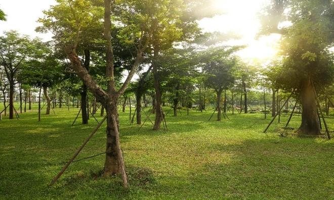 Hong Ha Eco City anh 3