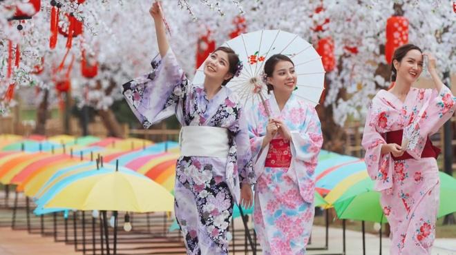 An Japan va nhom ban than dao xu hoa anh dao giua long Ha Noi hinh anh 3 03_1.jpg