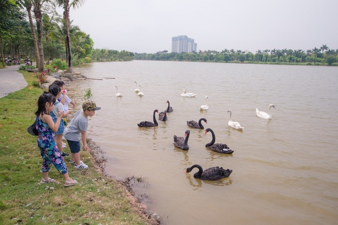 Ecopark anh 2
