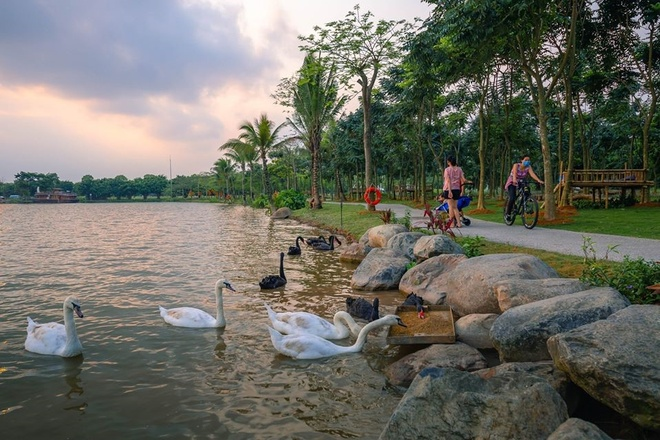 Ecopark anh 4