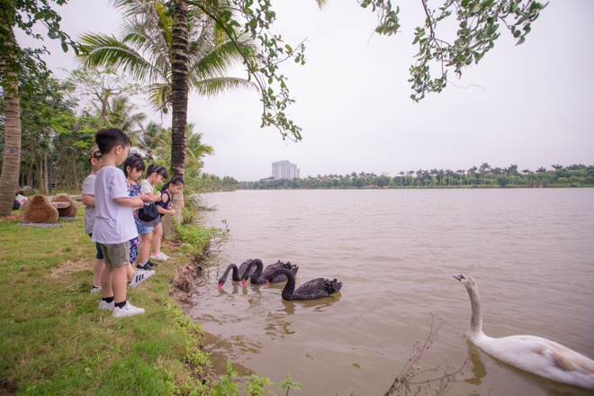 Ecopark anh 6