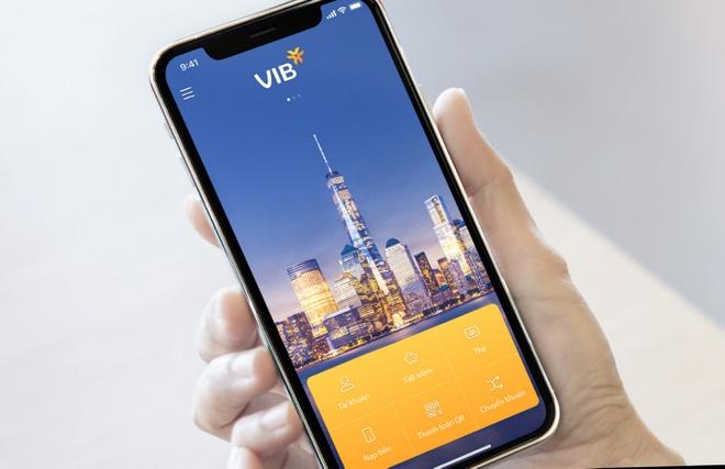 VIB anh 2