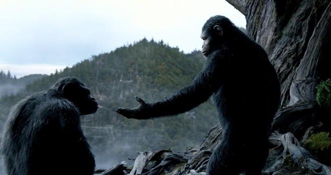 Binh doan khi ha be 'Transformers 4' tai phong ve Bac My hinh anh 1 Dawn of the Planet of the Apes