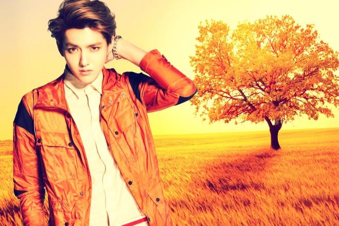 Kris, Luhan (EXO) lot top 10 ung vien Nam than chau A hinh anh