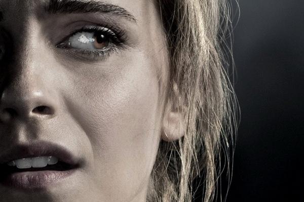 Emma Watson hoang loan tren poster phim moi hinh anh