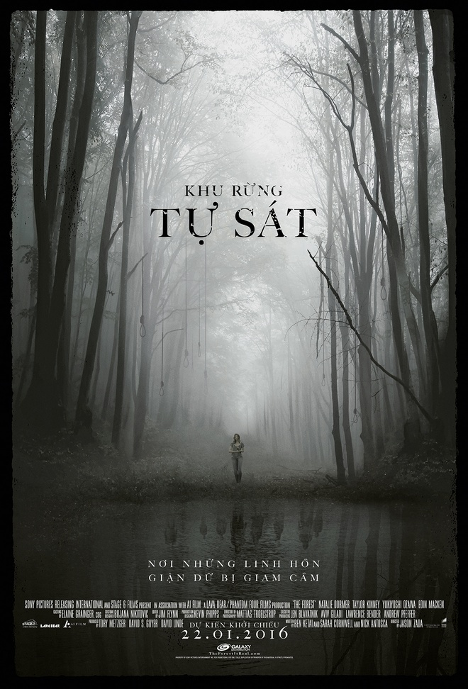 'Khu rung tu sat' - Phim kinh di dau tien cua nam 2016 hinh anh 1