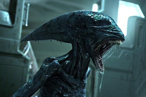 Quai vat Alien va Predator cung hen ngay tro lai hinh anh