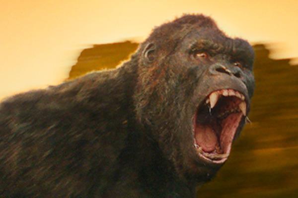 King Kong moi trong bom tan 'Kong: Skull Island' lo dien hinh anh