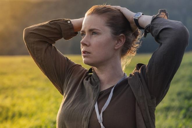 Website Oscar dang nham de cu cho Amy Adams, Tom Hanks hinh anh 2