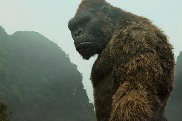 Truoc khi 'den' Viet Nam, King Kong thay doi nhu the nao? hinh anh