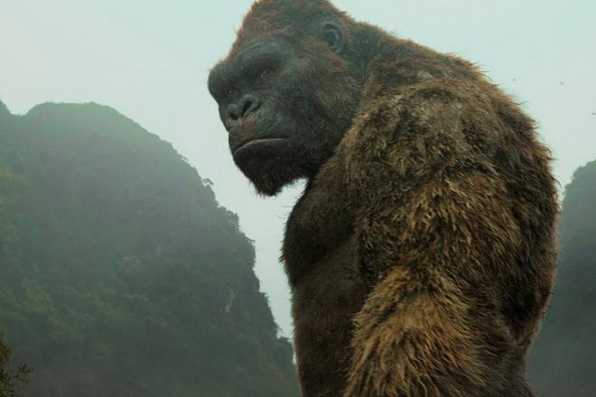 'Kong: Skull Island' thu 104 ty dong tai Viet Nam sau 7 ngay hinh anh