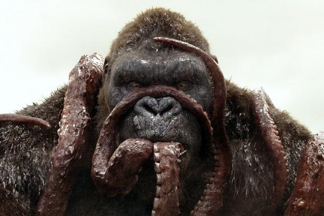 Nguon goc cua Kong se som duoc tiet lo hinh anh