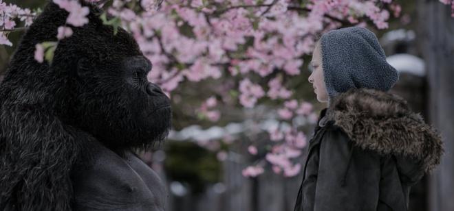 Fox mo chien dich tranh giai Oscar cho 'Dai chien hanh tinh khi' hinh anh 1