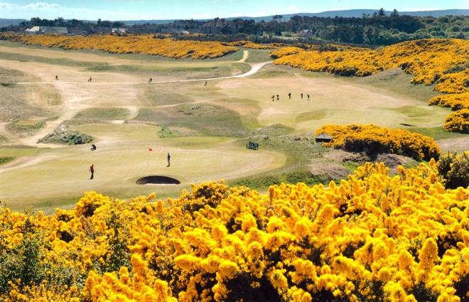Top 10 san golf dep nhat hanh tinh hinh anh 5