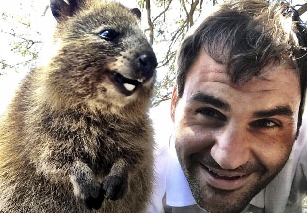 Federer hao hung selfie cung loai dong vat hanh phuc nhat the gioi hinh anh