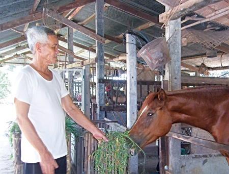 Thầy Ba Khánh Đông y bên tuấn mã