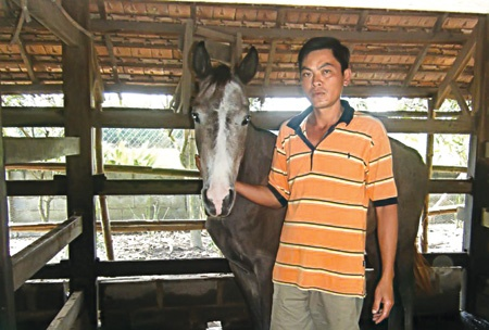 Kỵ sĩ Tuấn