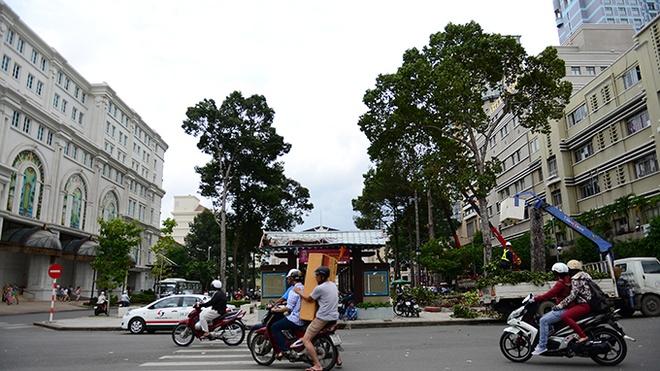 Vi sao phai don bo hang co thu khi lam Metro o TP.HCM? hinh anh 1 Hai hàng cây xanh trước Nhà hát TP giờ chỉ còn trong hoài niệm của người dân TP (ảnh chụp ngày 21/7).
