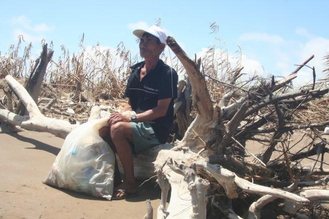 Mien Tay 'chay bien', 'chay song' hinh anh 1 Một người dân ở khu vực biển Ba Động (huyện Duyên Hải, Trà Vinh) bên hàng thông chắn sóng đã bị biển đánh trơ gốc.