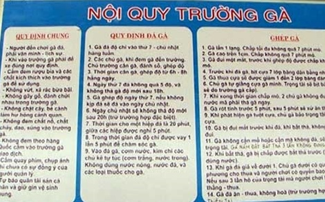 Pha 'thu phu da ga' o Quang Binh gay chan dong gioi ca cuoc hinh anh 2