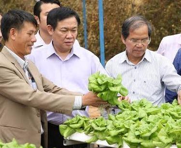 Pho thu tuong Vuong Dinh Hue tham hop tac xa Lam Dong hinh anh