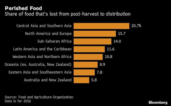Hơn 400 tỷ USD thực phẩm bị vứt ra bãi rác