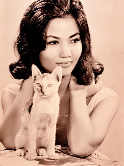 Kiều Chinh được đánh giá là một nhan sắc toàn tài của điện ảnh Việt Nam.