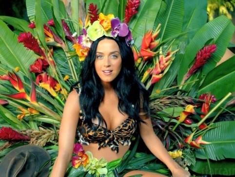 Katy Perry: Thanh sieu sao tu nhung dia nhac nghe len hinh anh