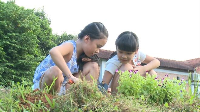 MC Phan Anh hon vo say dam tren truyen hinh hinh anh 6