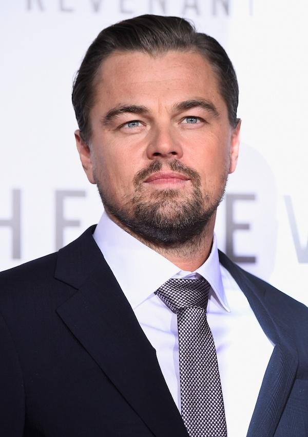 Leonardo DiCaprio: 'Giau co khong lam nen hanh phuc' hinh anh 1