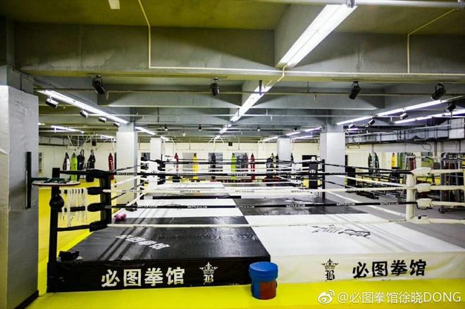 Lo vo MMA giup Tu Hieu Dong co thu nhap khong nho hinh anh 3