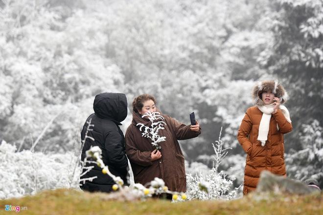 Bắc Bộ rét đỉnh điểm, vùng núi cao có mưa tuyết và băng giá