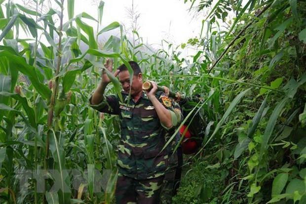 Bo doi bien phong Lao Cai tim thay thi the cu ba bi lac trong rung hinh anh 1