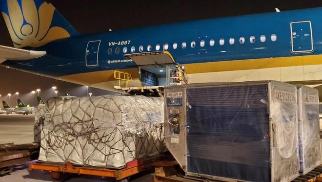 B787, A350 thanh may bay chuyen cho hang trong mua dich hinh anh 1 Anh_1.jpg  - Anh_1 - B787, A350 thành máy bay chuyên chở hàng trong mùa dịch