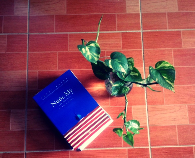 'Nuoc My' cua Franz Kafka duoc xuat ban o Viet Nam hinh anh 1