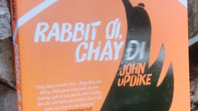 'Rabbit oi, chay di': Vong tron kiem tim va mat mat hinh anh