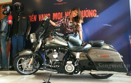 Harley-Davidson 2014 ban do chinh hang gia tu 1,3 ty dong hinh anh
