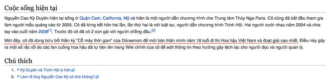 'Dai chien' tren Wikipedia Viet Nam vi Nguyen Cao Ky Duyen hinh anh 2