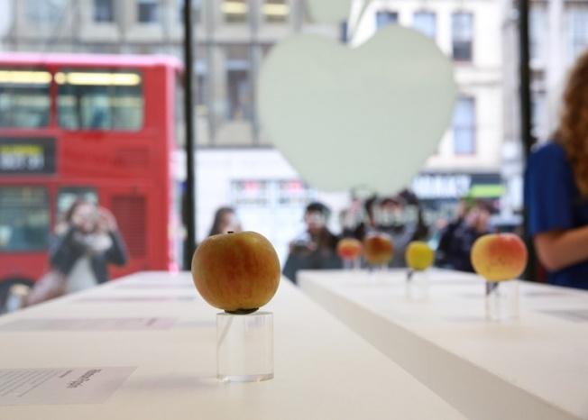 Vi sao Viet Nam chua co Apple Store? hinh anh