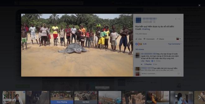 Hang loat trang Facebook o VN 'mat tich' do gian lan video hinh anh 1