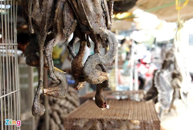 Cho chim troi 20.000 dong/con o cua ngo Sai Gon hinh anh 11 Những con chim cổ rắn bị  giết hại được nhổ lông rồi treo trước quầy trông rất đáng sợ.