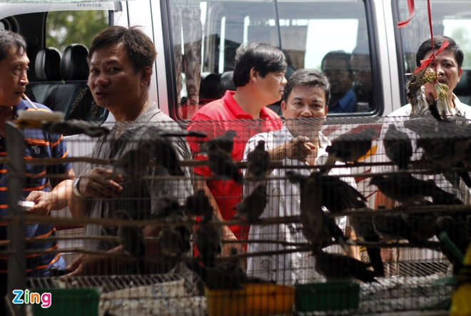 Cho chim troi 20.000 dong/con o cua ngo Sai Gon hinh anh 7 Những chiếc xe khách, xe du lịch thường dừng lại tại các chợ này để mấy ông bợm nhậu mua đặc sản mùa nước nổi về lai rai cùng bằng hữu.